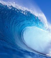 okyanus-kokusu